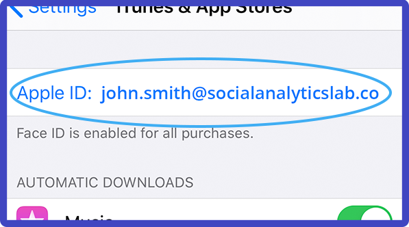 Apple ID within your Settings