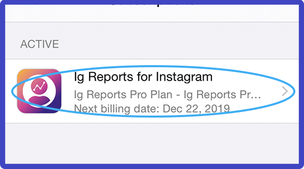Ig Reports App